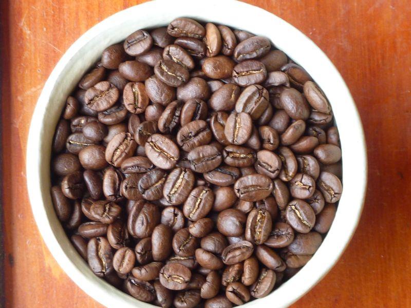 beans-B01