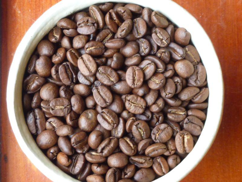 beans-B04
