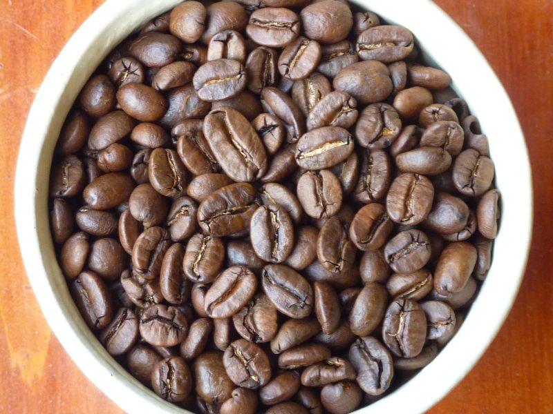 beans-B05