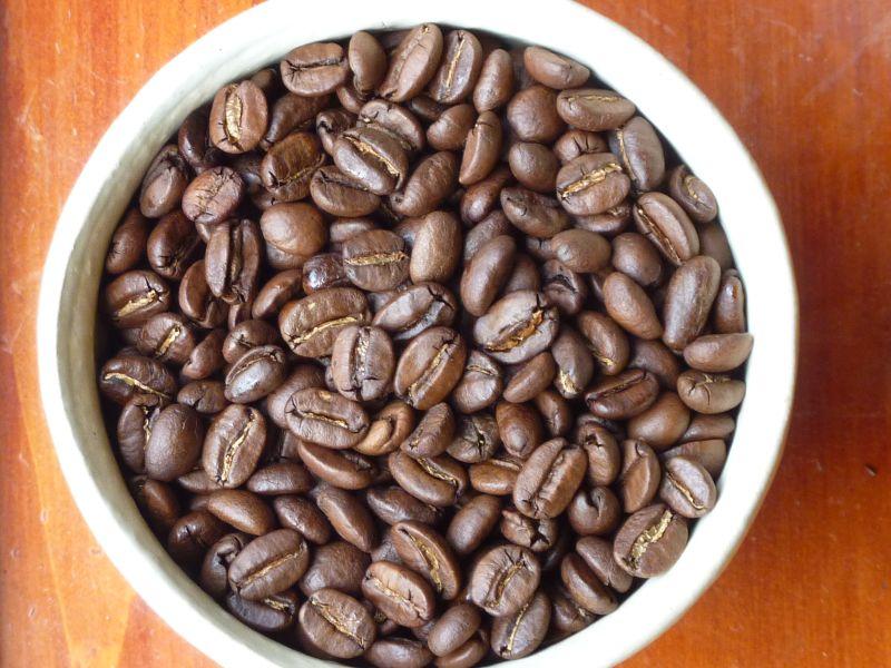 beans-B06