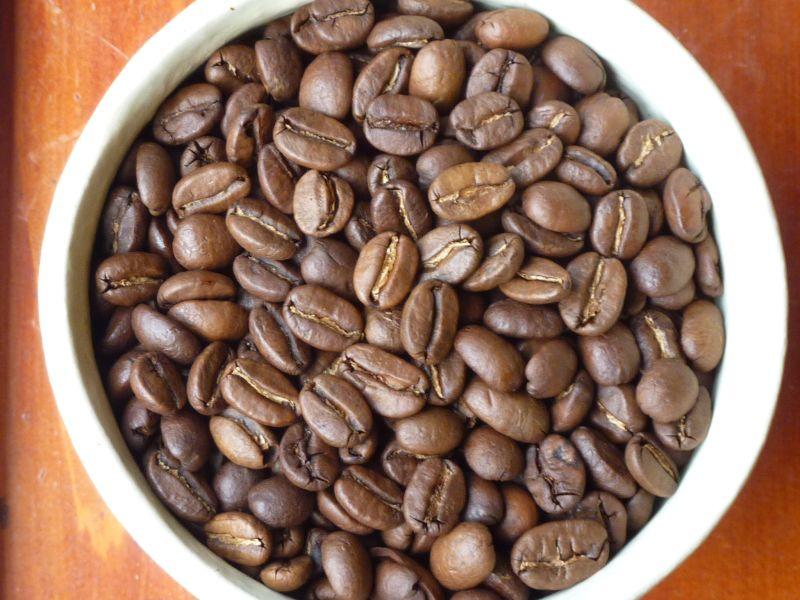 beans-B08