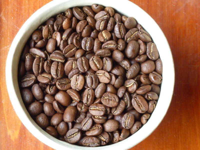 beans-S08